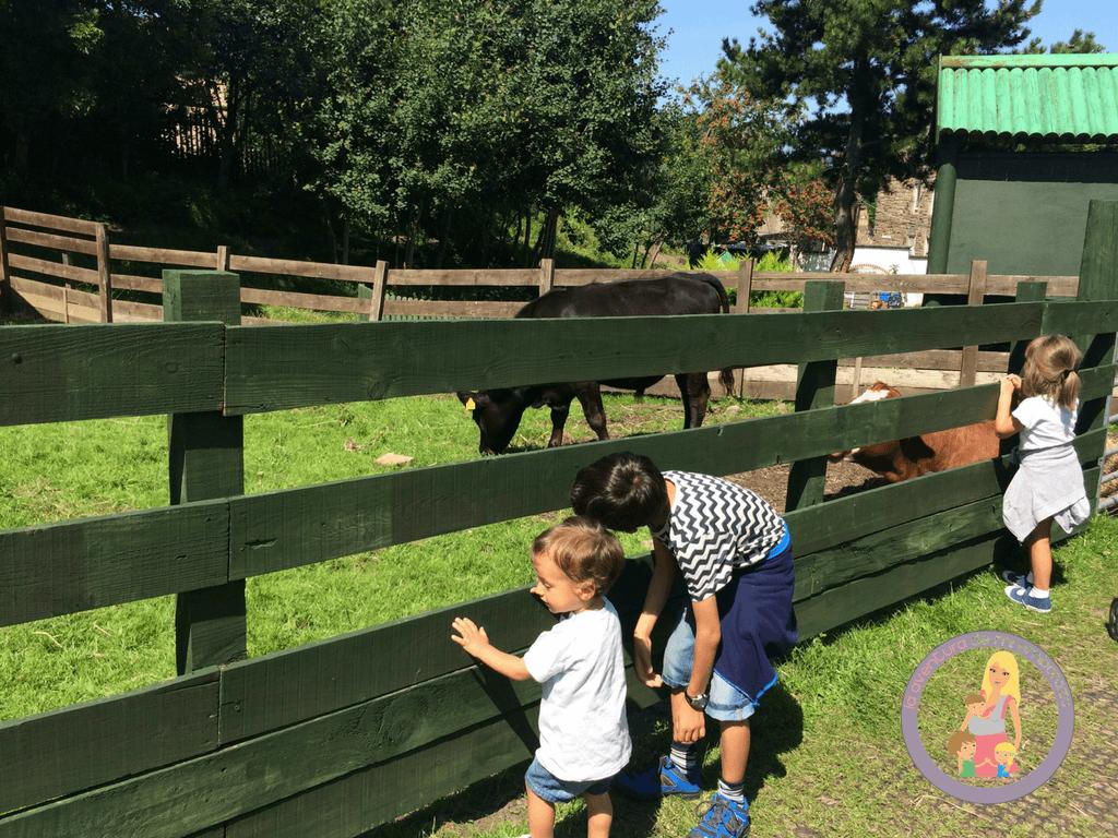 planes con niños en edimburgo gratis gorgie farm
